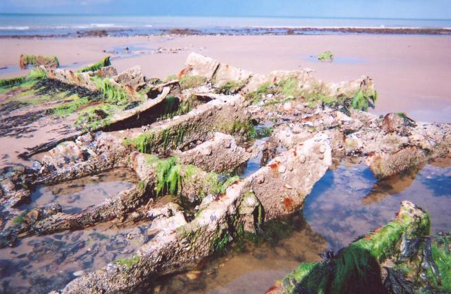 Colour photograph of ribs of wreck, partly covered in seaweed, in the foreground of the image, on a beach, which stretches to the background of the image. The top sixth of the image is taken up by a flat band of blue sky and sea.