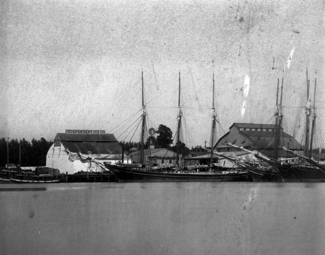 Black and white photograph of ships with masts and furled sails in harbour. three vessels are discernible in the lower centre of the photograph, with their masts standing talll against the roofs of two buildings, with a grey sky over.